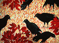 crows conversation